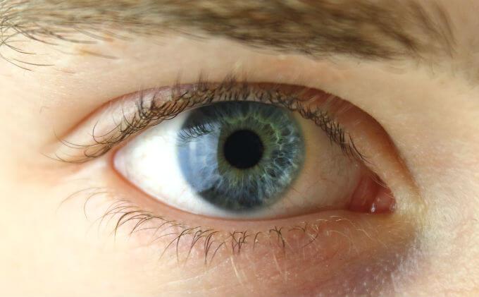 人の目の色は、全部で24種類(日...