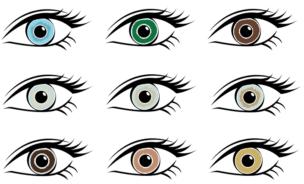 人の目の色は24種類