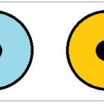 扇型虹彩異色症
