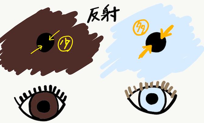 目の中の反射