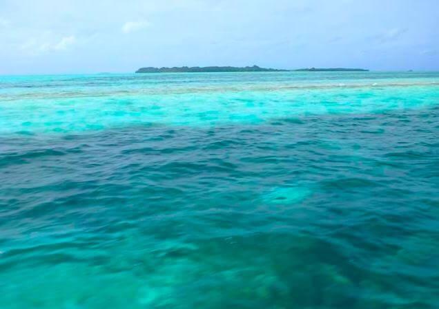 パラオの海はきれい