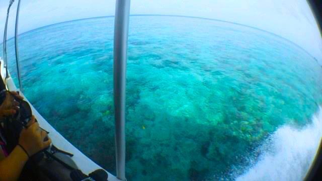 パラオの海を船から眺める