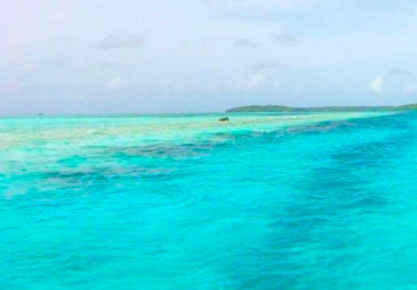 パラオの美しい海 2