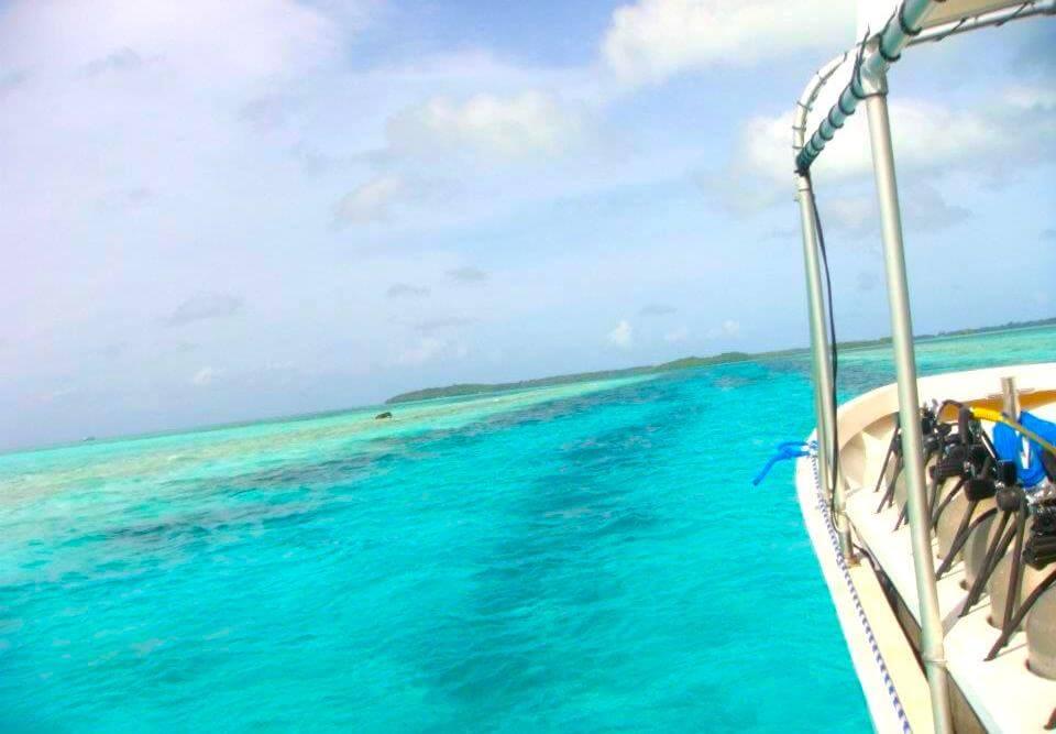パラオの美しい海
