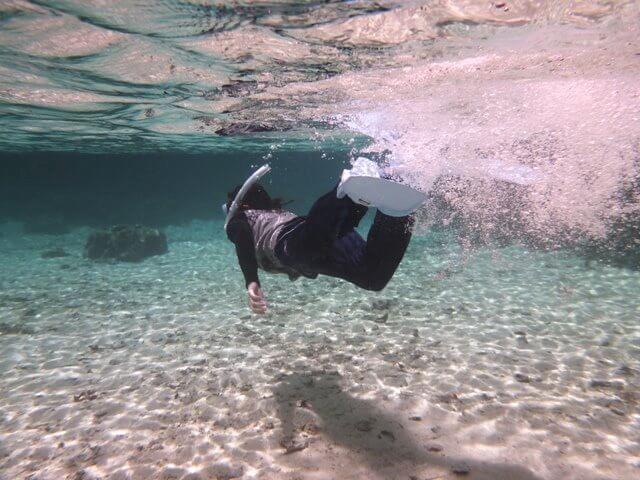 パラオの透明度抜群の海でシュノーケリング