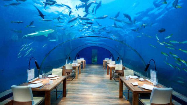 コンラッドモルディブの水中レストラン