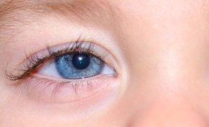 青い目の赤ちゃん
