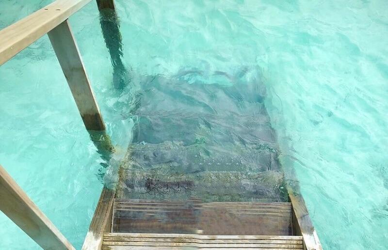 モルディブの海(ホテル)海への階段