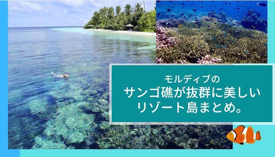 モルディブの珊瑚礁が美しい(ハウスリーフが良い)リゾート島まとめ